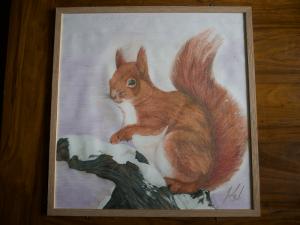 Mark Lewis Drawings squirrel